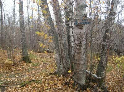 Fall 2008 201.jpg